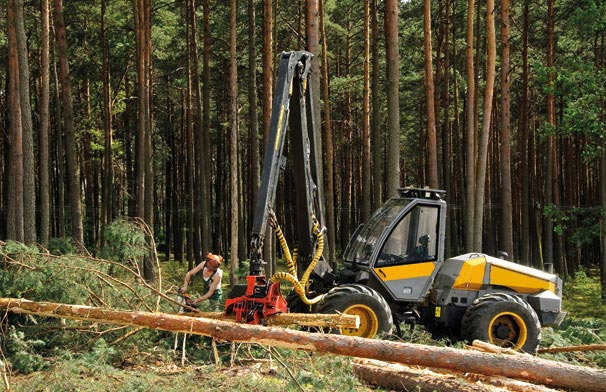 ECO Tuning Forestry